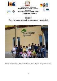 BIODIESEL Energia verde: ecologica, economica e sostenibile
