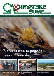 """Program gospodarenja za """"Pleterničke šume"""" - Hrvatske šume"""