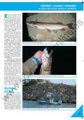 LA PESCA DEL LUCIO LA PESCA DEL LUCIO - Solopescaonline.es - Page 2