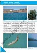 LA PESCA DEL LUCIO LA PESCA DEL LUCIO - Solopescaonline.es - Page 3