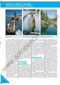 LA PESCA DEL LUCIO LA PESCA DEL LUCIO - Solopescaonline.es - Page 7