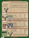 Friday - Whitetail Deer Farmer - Page 4