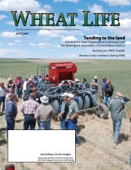 July - Wheat Life