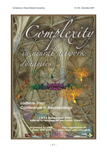 Complexity in Neural Network Dynamics 1314th ... - UNIC, CNRS