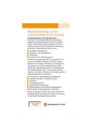 Informationsflyer BaE Berufsausbildung in einer ... - fit for work
