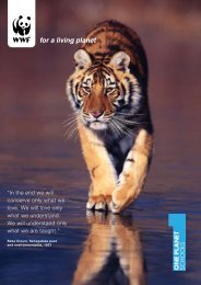 Autumn 2008 - WWF UK