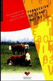 Rubro Carne Bovina2.pdf - Fia
