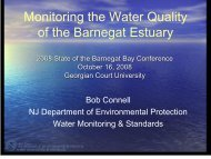 Monitoring the Water Quality of the Barnegat Estuary