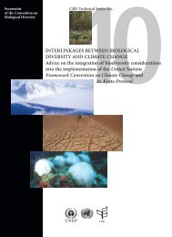 CBD Technical Series No. 10 - Convention on Biological Diversity