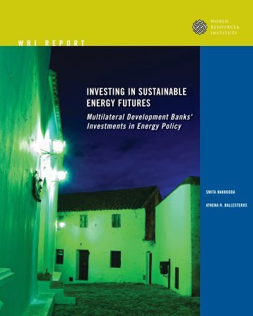 InvestIng In sustaInable energy Futures - World Resources Institute