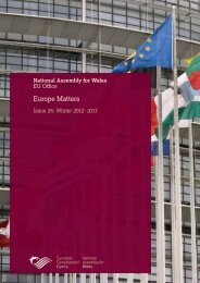 Europe Matters Issue 26 - National Assembly for Wales