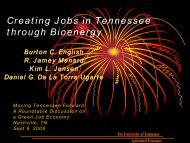 Creating Jobs in Tennessee through Bioenergy - Agricultural Policy ...