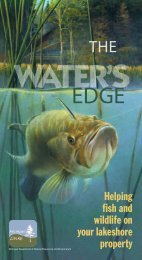 The Water's Edge Helping fish and wildlife on ... - State of Michigan
