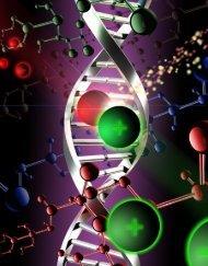 DNA as an Optical Material - Nanoelectronics Laboratory ...