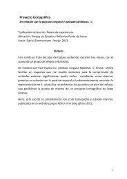 Proyecto Iconográfico En relación con la postura ... - Punta de Vacas