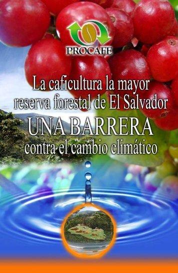 Versión en Español de la publicación - PROCAFÉ