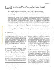 Structural Determinants of Water Permeability through the Lipid ...