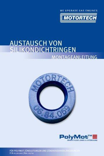 AUSTAUSCH VON SILIKONDICHTRINGEN - Motortech GmbH