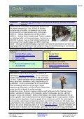 Safariprogram med Lake Eyasi och Serengeti - Dahl Safaris - Page 3
