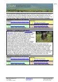 Safariprogram med Lake Eyasi och Serengeti - Dahl Safaris - Page 4