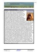 Safariprogram med Lake Eyasi och Serengeti - Dahl Safaris - Page 6