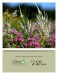 Chicago Wilderness Climate Action Plan for Nature - Page 6
