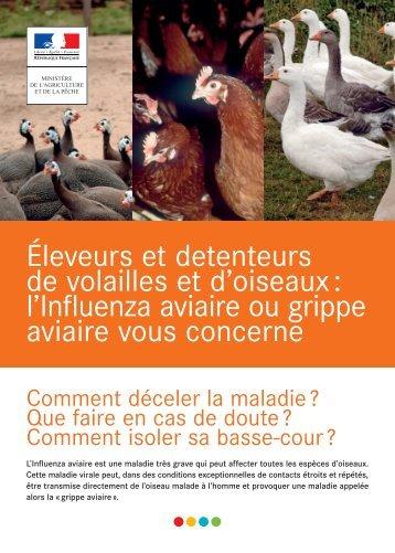 Influenza aviaire - Garde-vidourle-34.veterinaire.fr