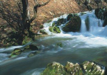 Energija vode - Centrala