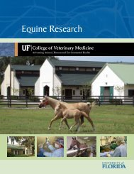 Overview of Equine Research at UF - Veterinary Extension