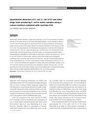 Quantitative detection of E. coli, E. coli O157 and other shiga toxin ...