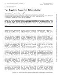 The dazzle in germ cell differentiation., Journal of ... - Stemcelllab.org