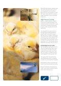 Skov LPV Poultry - Page 7