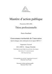 Gouvernance territoriale de l'innovation - Euromedina
