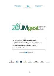 la valutazione dei beni ambientali negli interventi di ... - Ispra
