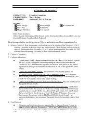 Minutes of the January 2, 2013 Executive Committee meeting