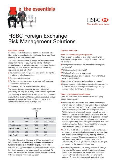 Foreign Exchange Risk Hsbc Global