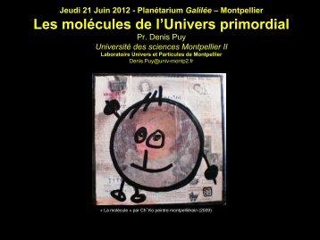 Téléchargez le diaporama de Denis Puy (format pdf : 14Mo)