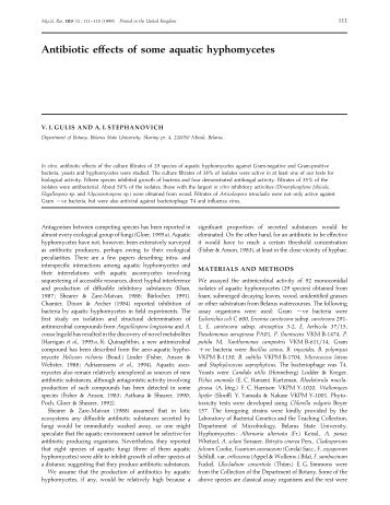 Hyphomycetes Classification Essay - image 3