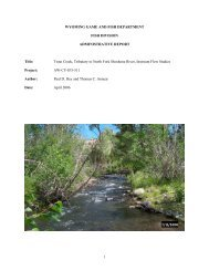 Trout Creek, Tributary to North Fork Shoshone River