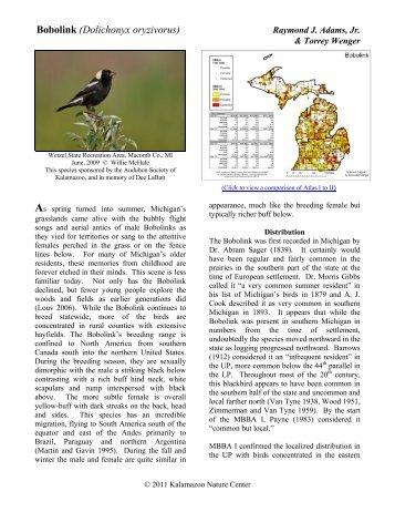 Bobolink - Michigan Breeding Bird Atlas Website