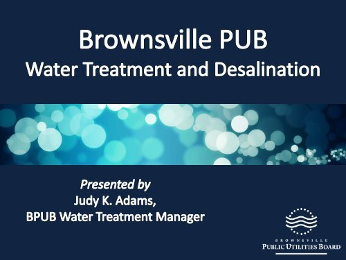 Brownsville Public Utilities Board - Texas Commission on ...