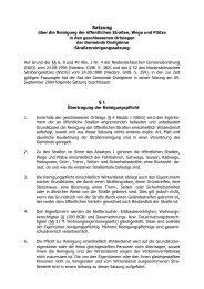 Satzung über die Reinigung der öffentlichen Straßen, Wege in den ...
