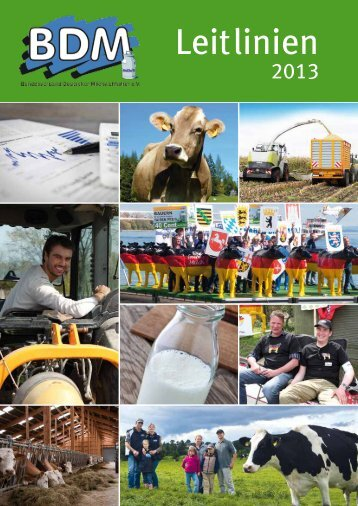 jüngst veröffentlichten Leitlinien - Bundesverband Deutscher ...