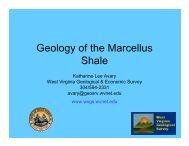 Geology of the Marcellus Shale - West Virginia Geological and ...