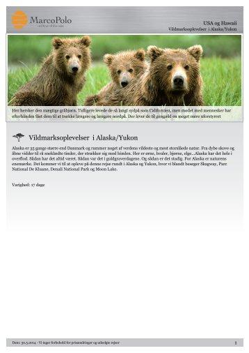 Vildmarksoplevelser i Alaska/Yukon - MarcoPolo