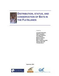 distribution, status, and conservation of bats in the fiji islands