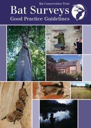Bat Survey Guidlines - Merthyr Tydfil County Borough Council