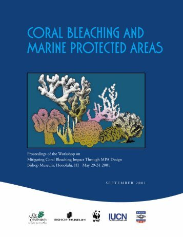 Coral Bleaching and Marine Protected Areas - WWF Blogs