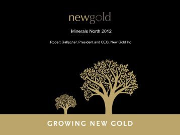 New Gold MN 2012.pdf - Minerals North