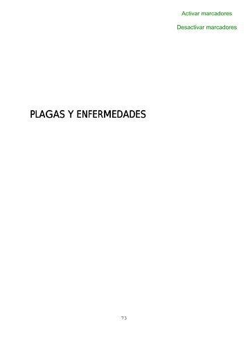 Documento propio sobre Plagas y enfermedades